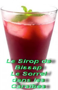 Santa Augustina, votre magasin bio !  verre-de-sirop-de-bissap1-194x300
